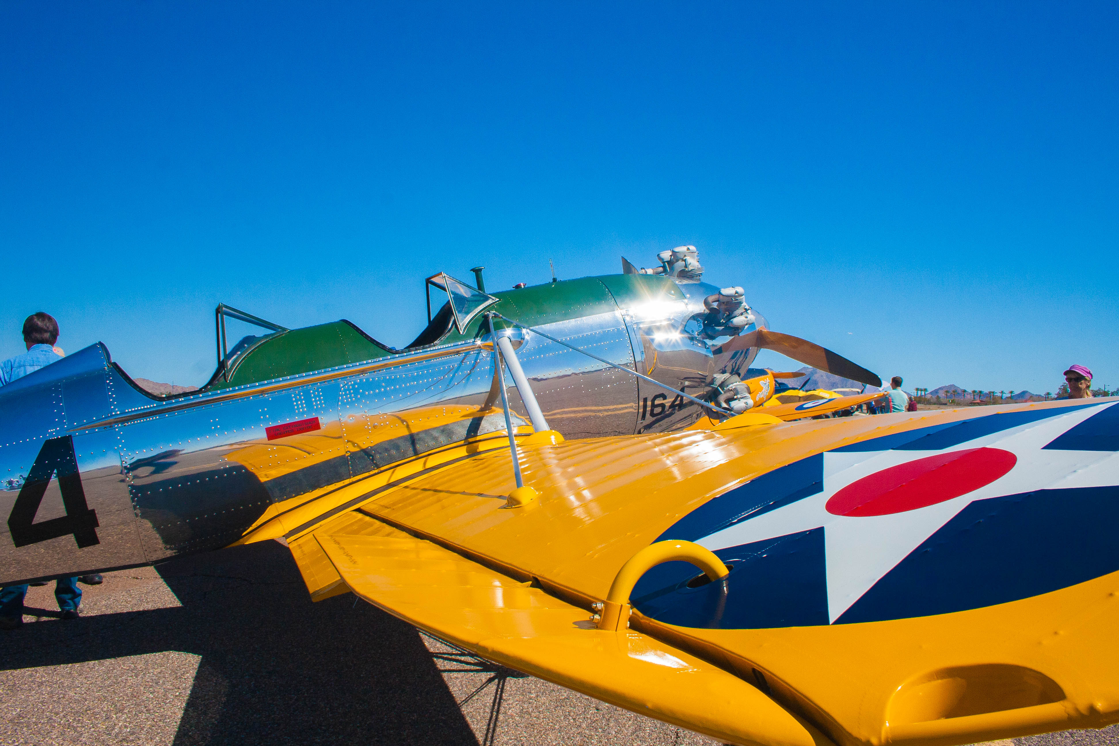 Cactus-Fly-In_2018 (8)
