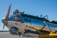 Cactus-Fly-In_2018 (10)