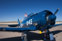 Cactus-Fly-In_2018 (11)